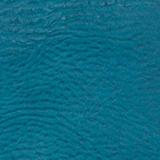 HYDRANGEA BLUE caillou